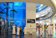 Download Aquarium In Der Dubai Mall