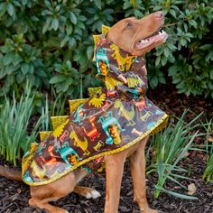 Boy Dog Rain Coat - Dino
