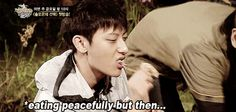 me around insects + children tbh #tao #exo