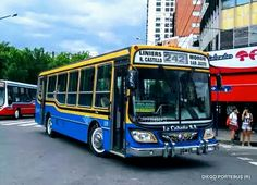 Busses, Vehicles, Urban, Argentina, Hair, Car, Vehicle, Tools