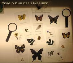 Resultado de imagen para mariposa actividades mesa de luz