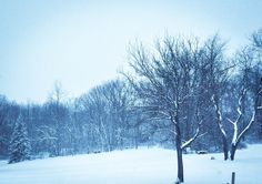 "Winter storm proved to a typical snowstorm in ""The Burgh"". All hype.. Still a peaceful view..."