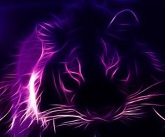fractal animal | fractalius purple lions HD Wallpaper of Wild Animal & Reptiles