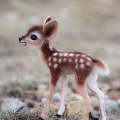 Bambi Cuteness overload Tag Your Friends … Baby Bambi Cuteness overload Tag Your Friends .Baby Bambi Cuteness overload Tag Your Friends . Baby Animals Super Cute, Very Cute Baby, Cute Little Animals, Cute Funny Animals, Cute Cats, Baby Animals Pictures, Cute Animal Photos, Cute Animal Drawings, Baby Pictures