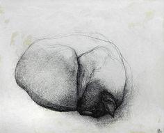 John Gould, Sleeping Cat, 1974, Conté, 9.5 x 11.75 Inches