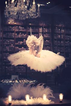 Tutu in the window of Repetto.  Paris, France. *Been in this store=amazing*