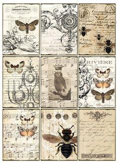 Printables--- very cool for mod podge projects! Sheet vlinders en vliegen | ~Dieren | Nostalgie Brocante