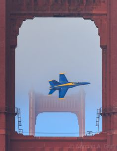 A member of the US Navy Blue Angels flight demonstration team flies over the Golden Gate Bridge and below the fog during an orientation flight prior to performing at the 2014 San Francisco Fleet Week Air Show. Blue Angels Air Show, Us Navy Blue Angels, Military Jets, Military Aircraft, Fighter Aircraft, Fighter Jets, Fleet Week San Francisco, Angel Flight, Air Force