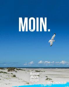 Moin. Der nordische Gruß. Mehr auf unserer Moin-Seite >>