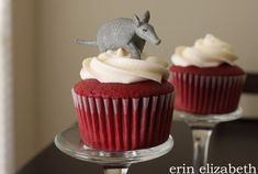 cute option for armadillo - maybe on a white cake for your event
