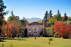 casas viejas de chile | ... Fundo Cunaco - Valle de Colchagua (Chile) | Flickr - Photo Sharing Homeland, Patagonia, Cottages, Roots, Places To Go, House Styles, Sweet, Projects, Beautiful