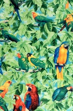 We love #tropical print!
