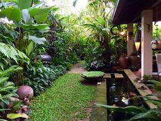 Singapore garden of Irene Ngoo