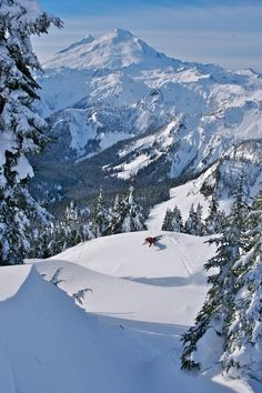 Mt. Baker, WA...skiing nirvana