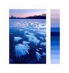 Nature's Most Exquisite Color Palettes Revealed | The Creators Project
