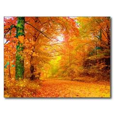 pictures of vermont in the fall - Yahoo Search Results