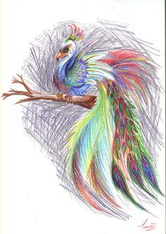 phoenix peacock