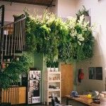 10 Tips to Make Your Home Greener this Spring