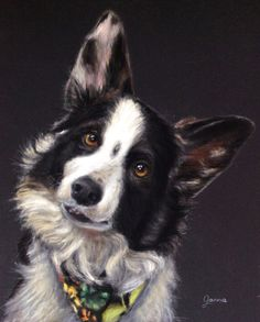 Custom Pet Portrait Drawing with Soft Pastel on High by GannaArt