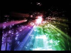 Rainbow Through Trees Sunlight