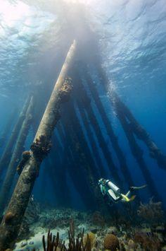 scuba diving, Nether