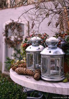 Hof 9: II. Adventspecial mit vielen Weihnachtssternen