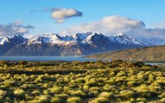 The Pampas, Argentina.  #Argentina #Travel #mountains