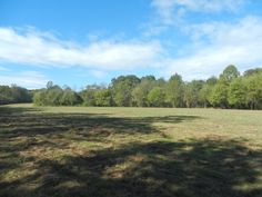 6.16 Acre Equestrian Estate with Large Creek