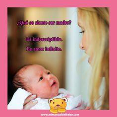 10 Ideas De El Manual Del Bebe Bebe Programa De Preescolar Enseñanza Preescolar