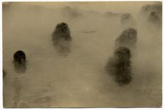 Masao YAMAMOTO - Refined, subtle and powerful Photography Japanese Photography, Fine Art Photography, Yamamoto, Japanese Philosophy, Gelatin Silver Print, Foto Art, Japan Photo, Cool Photos, Artsy