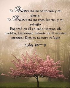 Spiritual Messages, Spiritual Quotes, Faith Quotes, Bible Quotes, Tips To Be Happy, Birthday Wishes Messages, Biblical Verses, Bible Verses, Bible Promises