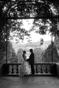 cheekwood wedding pictures - Google Search