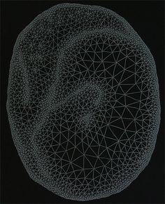"""Clint Fulkerson, Zygote, 21"""" x 17"""" White Pencil on Black Paper 2008."""