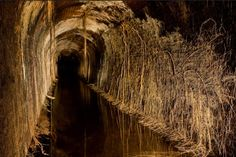 through the tunnel essay Exploring sewers, utility tunnels, and catacombs around the world . Underground World, What Lies Beneath, Catacombs, Modern City, Historical Architecture, Photo Essay, Abandoned Places, Archaeology, Old Things
