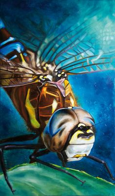 Oil painting Dragon fly Carina Kroeze