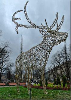Helsingissä ruoho kasvaa ja puistot täynnä poroja. Giraffe, Animals, Giraffes, Animales, Animaux, Animal, Animais, Dieren