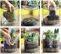 Vende4 » Plantas