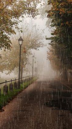 I love rain~ Walking In The Rain, Singing In The Rain, Rain Gif, Digital Foto, Beautiful Places, Beautiful Pictures, I Love Rain, Rain Days, Rain Photography
