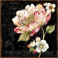 Art In Motion botanica-flowers