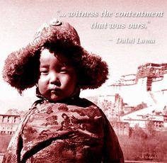Dalai Lama ( Tenzin)