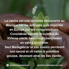 Découvrez la légende ici : http://www.vanilla-islands.org/ Iles Vanille - Vanilla Islands #Madagascar #Vanille