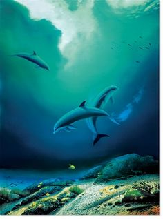 Wyland- Children of the Sea