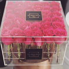 Love Clear Box & Roses