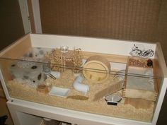 DIY hamster cages, would also work for my mice! Lots of play space and toys!