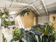 Go green – offices fit for the future - News - Frameweb