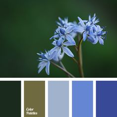 Blue Flower Color Palette Tags Air Le Green
