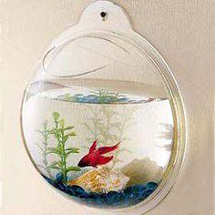 Fishbowl Wall Art