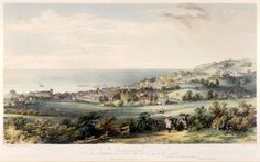 Post about my research about locations in Lyme Regis for my heroes, Oliver and Jack. Came up with Rhode Hill House a substantial house in the village. Lyme Regis, House On A Hill, Writing, Mushrooms, Being A Writer
