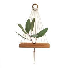 — Minimalist Hanging Vases by Kirralee & Co Using...