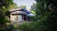 A greensih view of cottage of singinawa jungle lodge